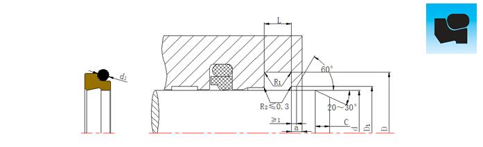 dsz组合防尘圈切面结构设计平面图.jpg