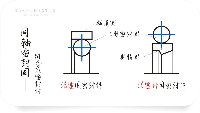 同轴组合密封件圈截面结构平面图