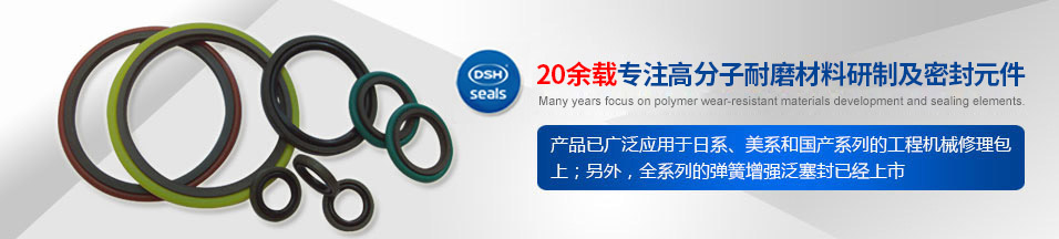 PTFE油封H型 - 全PTFE油封的型式 Different type of (all) PTFE oil seals.(PTFE) - PTFE油封,油封,油封厂